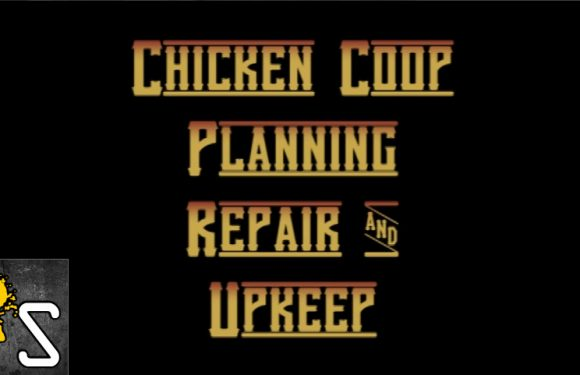 VIDEO: Chicken Coop Planning, Repair and Upkeep